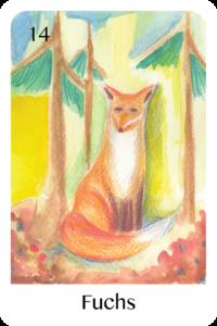 Der Fuchs als Tageskarte