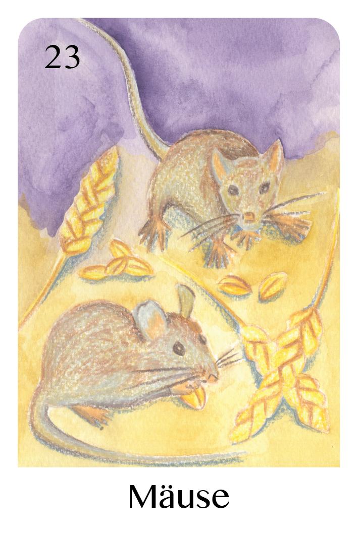 Die Mäuse als Tageskarte