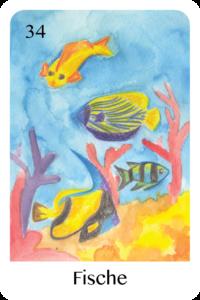 Die Fische als Tageskarte